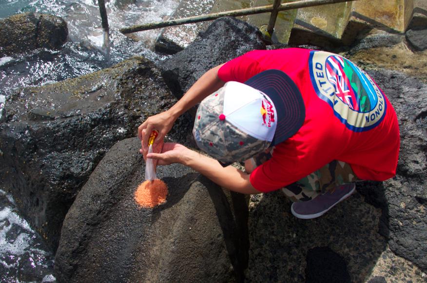 Hawaiian Salt: Fitted x Aloha Got Soul
